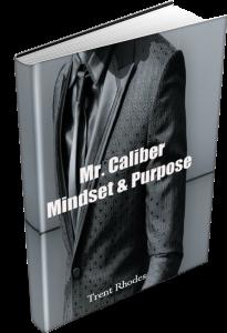 Mindset & Purpose eCover Transparent885x1298